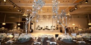 Wedding Reception Venues in Arizona